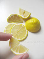 1-3 Lemon Slices and wedges 2
