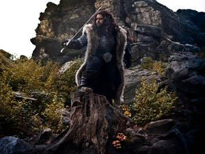 Thorin Cosplay