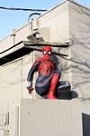 The Spectacular SpiderGirl