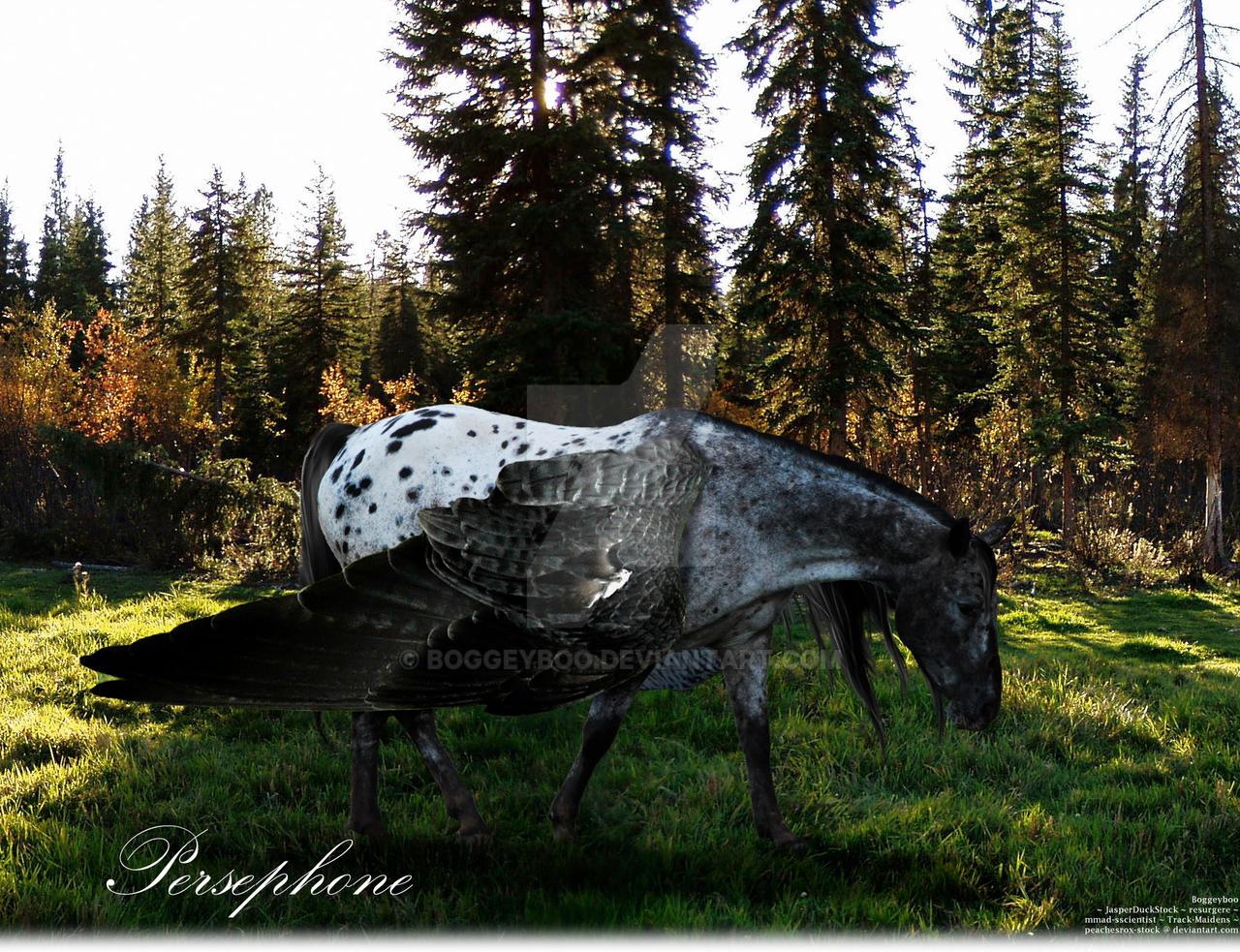 Persephone - Blue Roan Appaloosa Pegasus by Boggeyboo