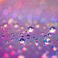 Crystal Purple by Arai-Foto