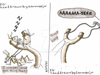 Ant Slingshot - Fall2019