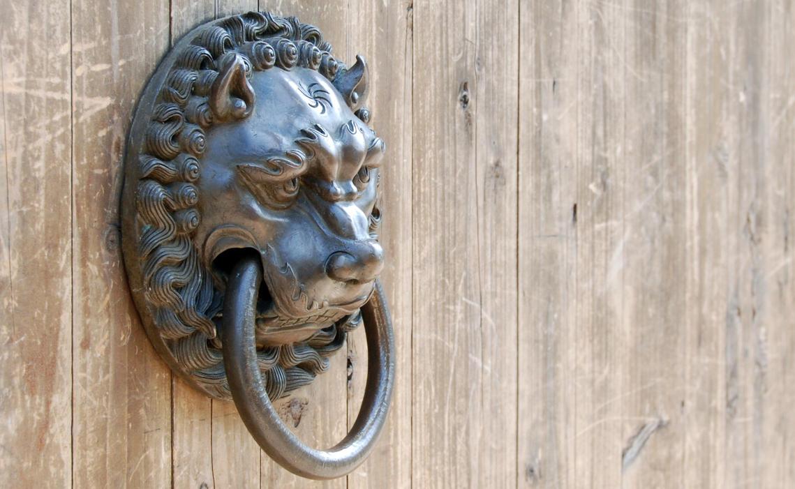 Lion Door Handle By Bilzow ...
