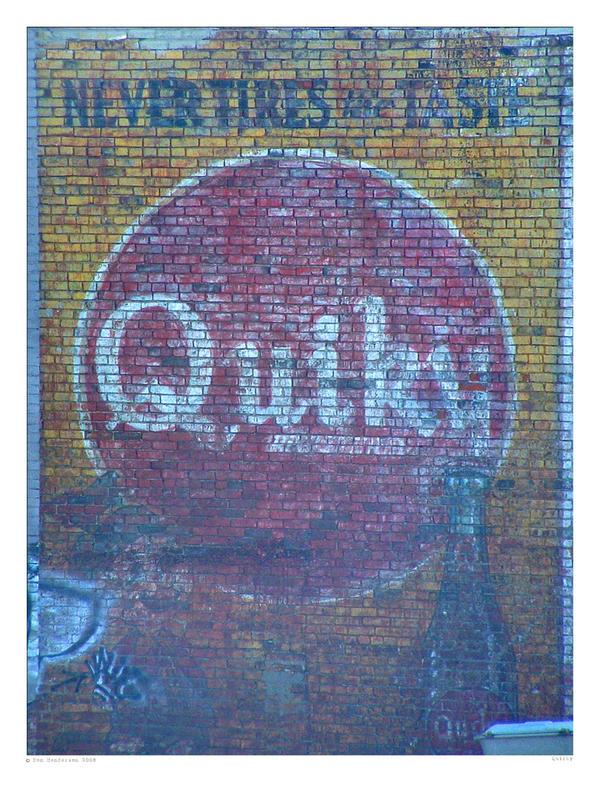 Quiky by yankeedog