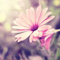Cliche by Karisca