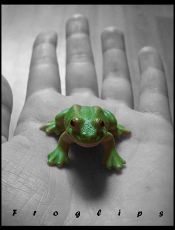 Froglips's Profile Picture