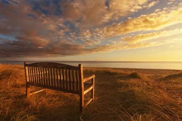 Beach Seat