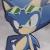 Sonic Riders Sonic Icon