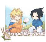Fields of Naruto