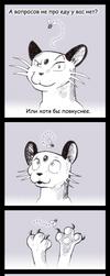 Do cats eat flies? Do flies eat cats? by Katemare