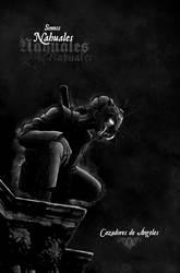 Somos nahuales by azlath