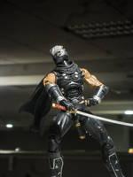Ninja Gaiden by YoLoL