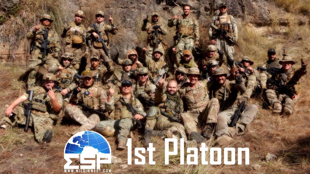 My MSW Platoon by YoLoL