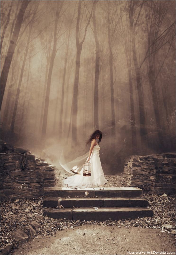 Dawn- of- Dark by HUSSIENAL-SHTERI
