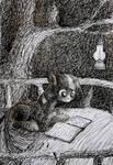 Twilight studies all night long