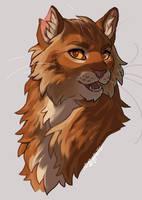 Lion boy pt. 2 by soggypelts