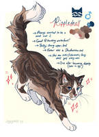 Gov Assigned Cat by soggypelts