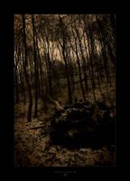 winter 06+07 by -nightm4r3-