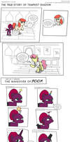 The TRUE story of Tempest Shadow