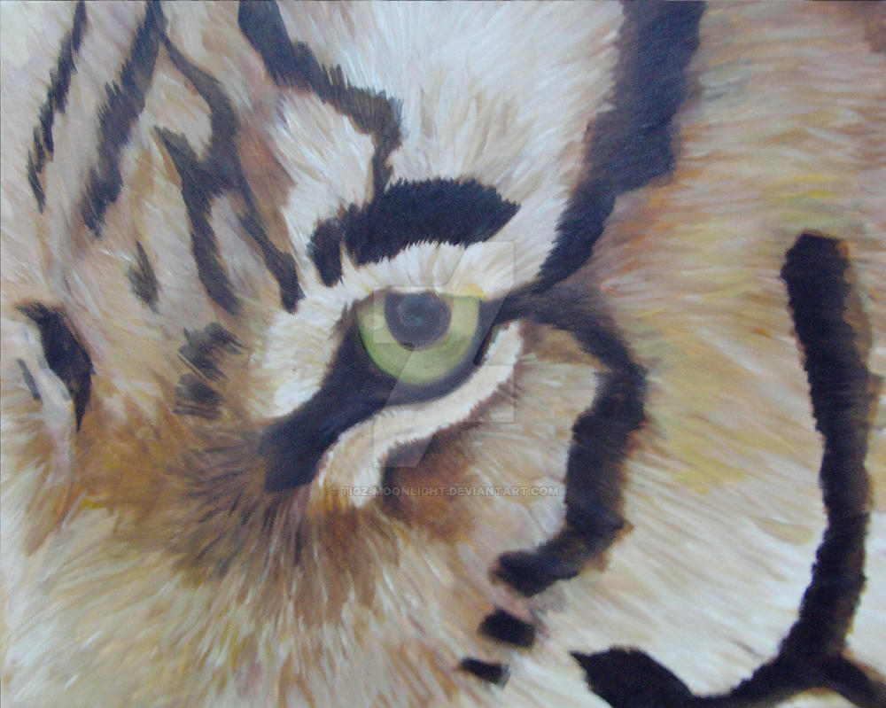 Eye of the Wild - WIP by Tigz-Moonlight