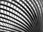 Slinky by ivanjs