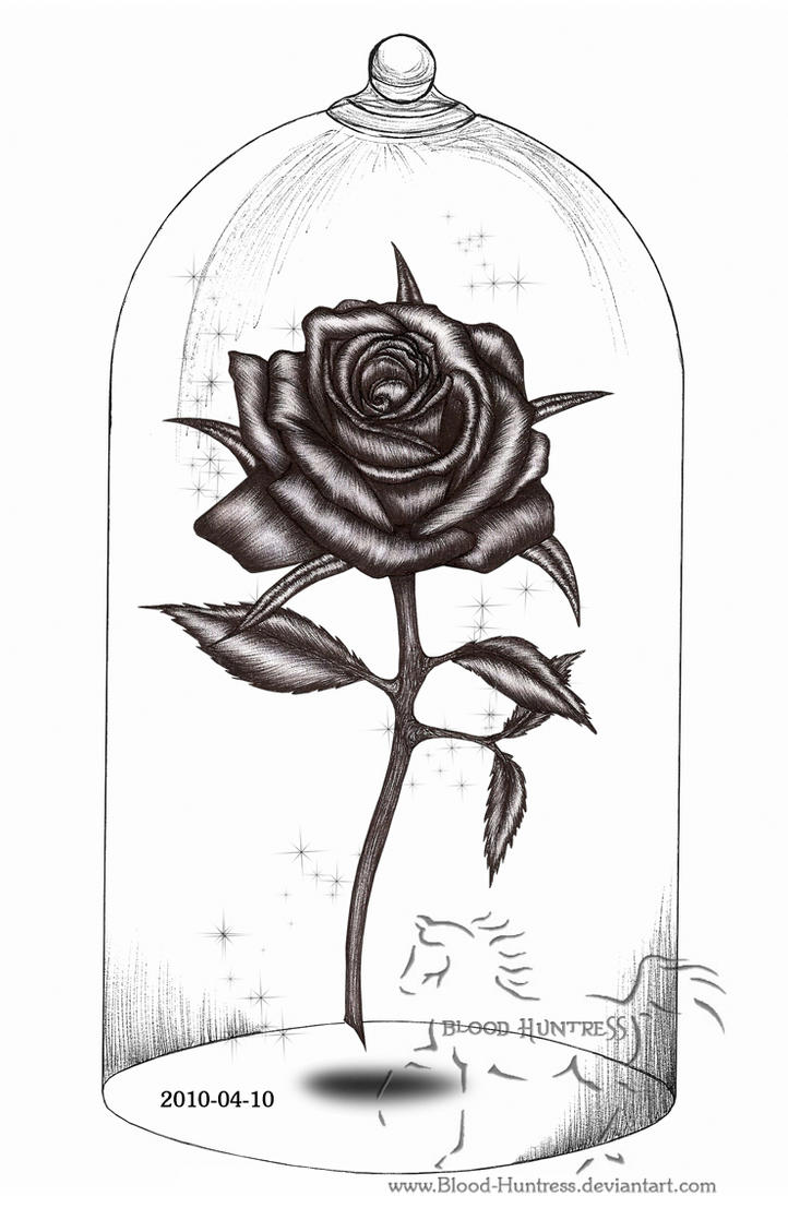 Beauty and the beast rose in glass drawing