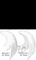 Wings Lineart 2011-01-26