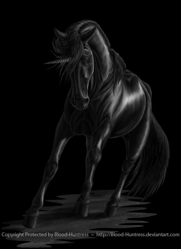 The Rare Black Unicorn 2012-07 by Blood-Huntress on DeviantArt