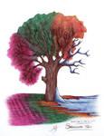 Seasonal Tree 2021-03-04