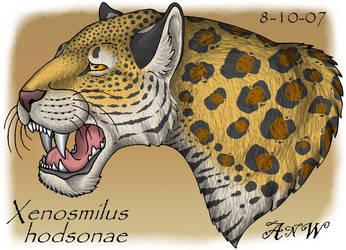 Xenosmilus hodsonae panting by Leonca