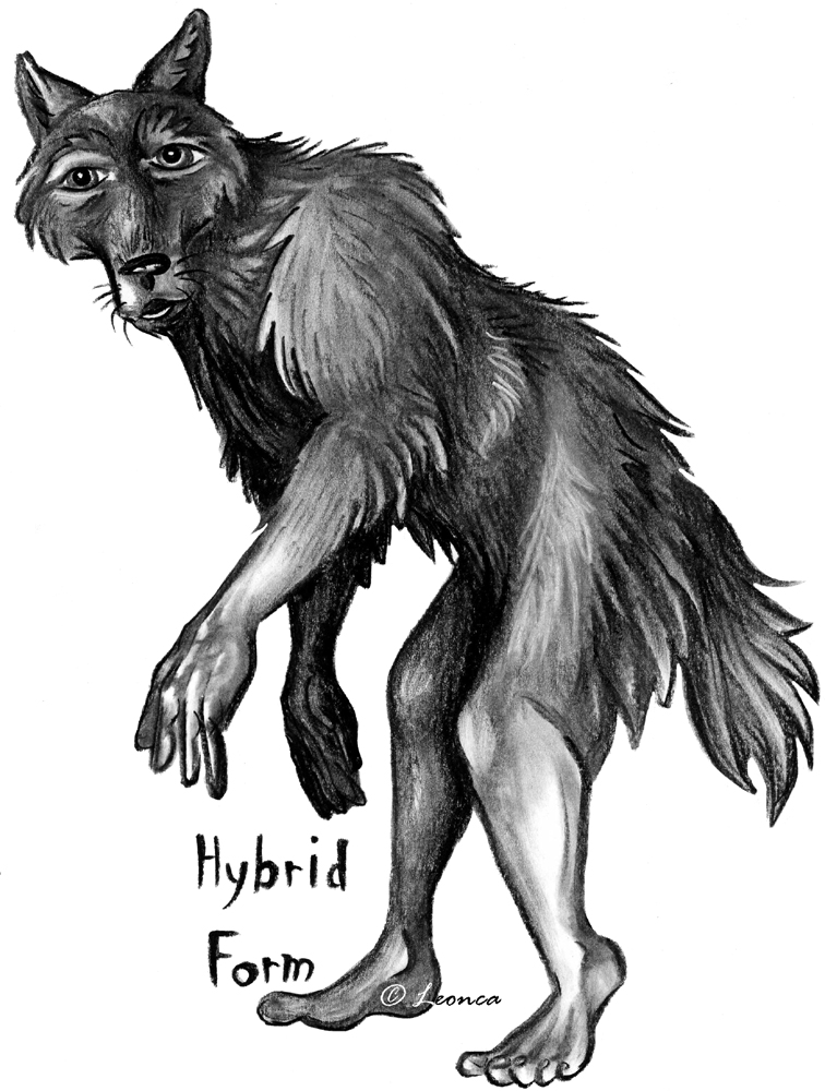 Werewolf Guide - Terminology by Leonca on DeviantArt