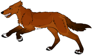 Werewolf Guide - South America