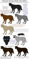 Dog Colors Guide- Black by Leonca