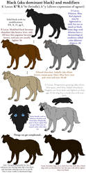 Dog Colors Guide- Black by Leonca
