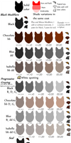 Balanced Dog Color Examples