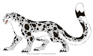 Lucia the Snow Leopard