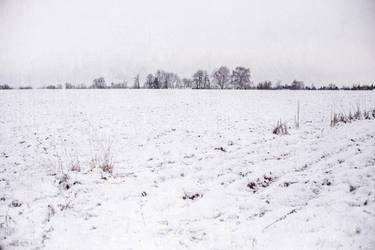 Winter by Fotoaurinko