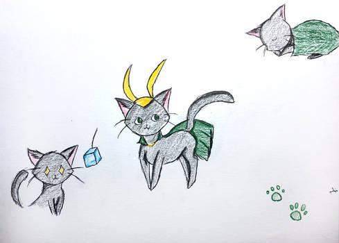 Loki cat!!
