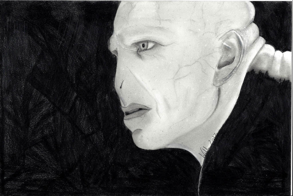 Voldemort by WillSpiderMan