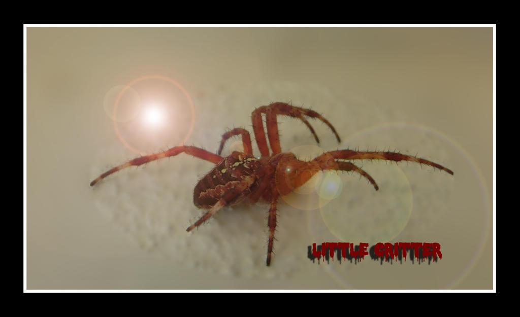 Spider by JokerX2011