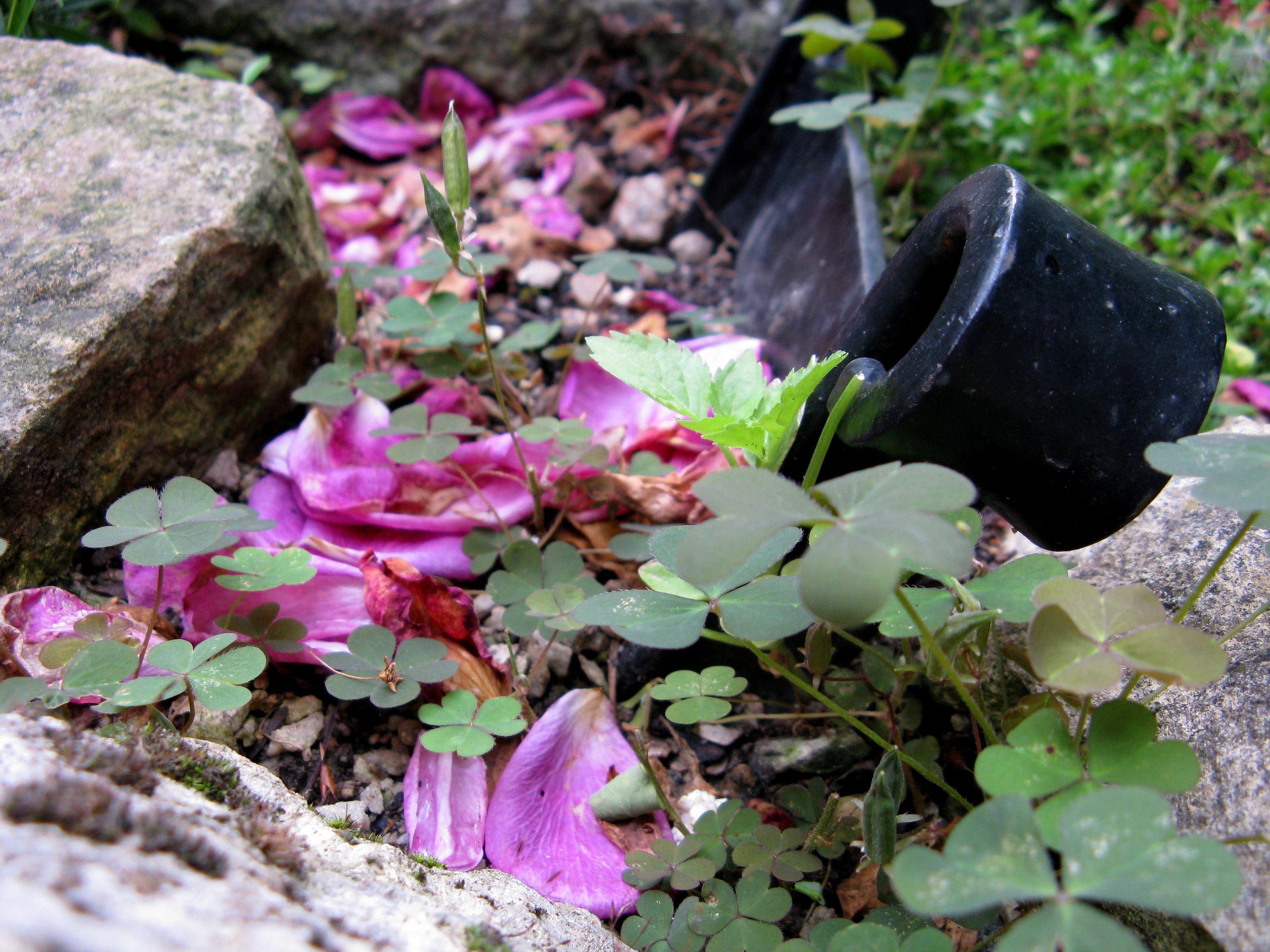 Garten 6 by Fra-Ka