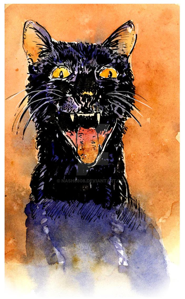 Black Cat by nash8808