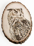 Eagle Owl-pyography