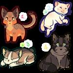 Cat Adopts - #1 - CLOSED