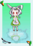 Rabbit  puddle by venomf