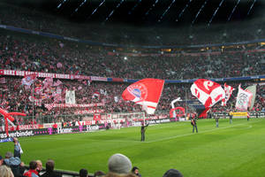 Allianz Arena I by sibbl