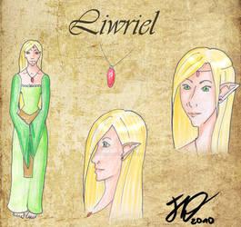Aymerel Ref-Sheets - Liwriel