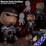Gears of War Sackboy