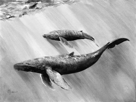blue whale inktober day 4 underwater