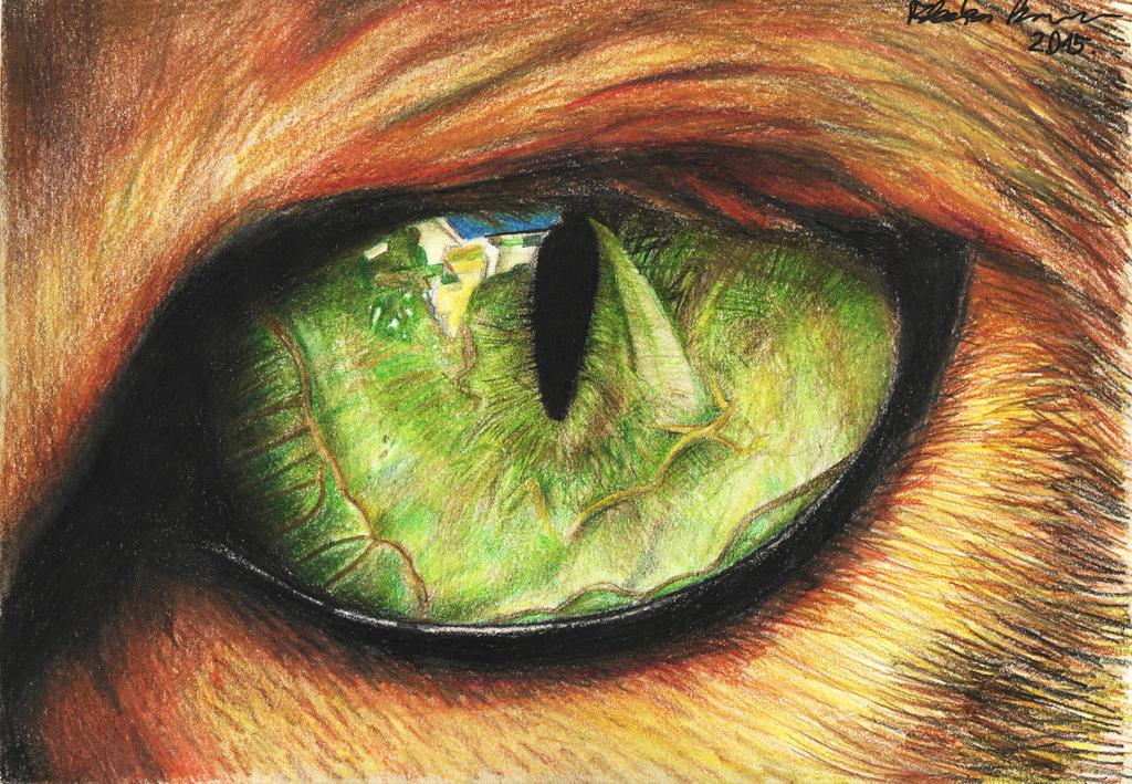 Cat Eye drawing by itsanne on DeviantArt